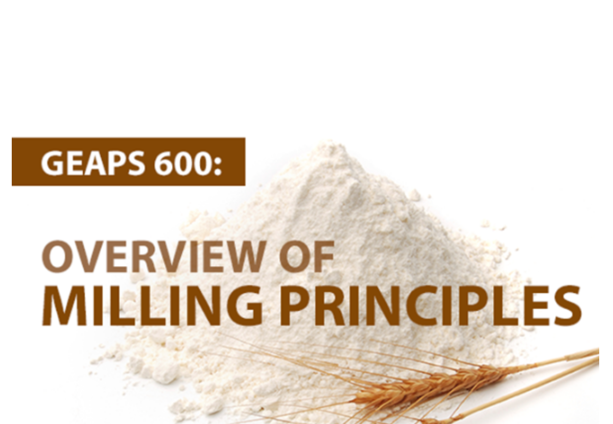 GEAPS 600 an online course offering an overview of the