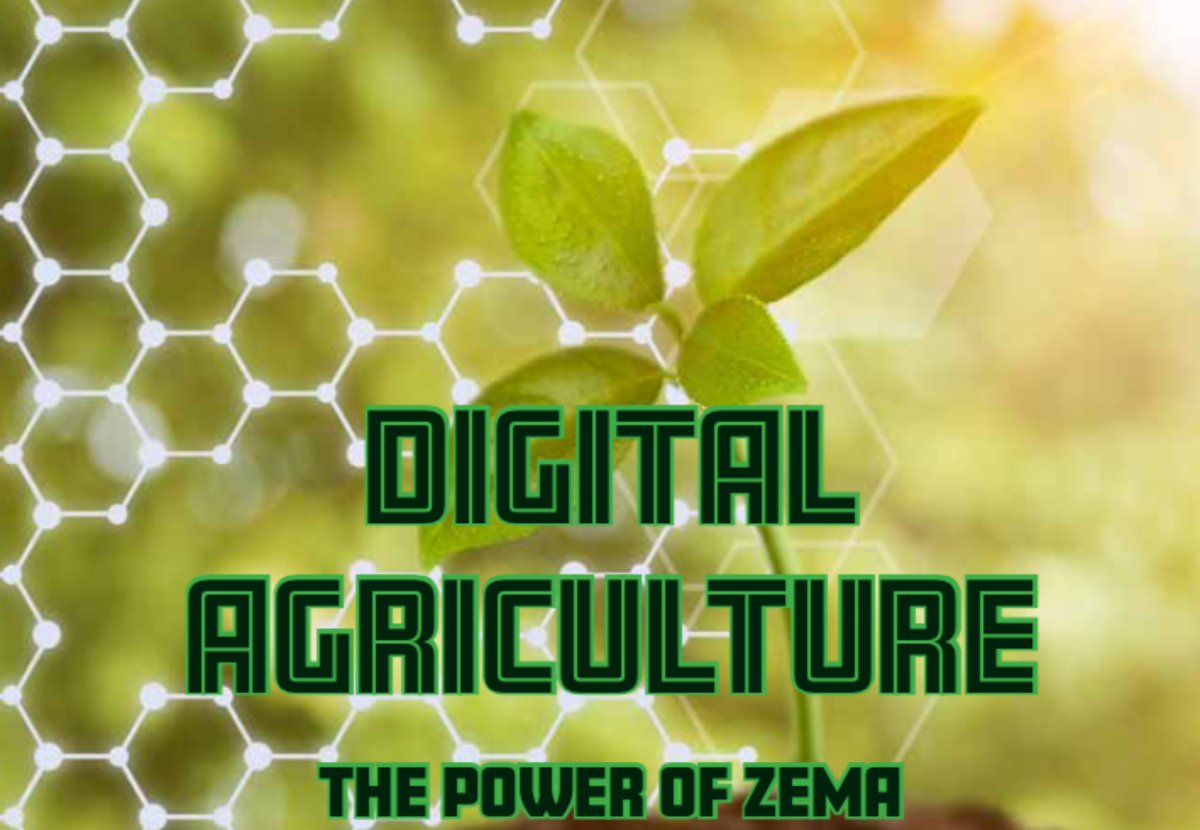 Digital agriculture through the power of ZEMA