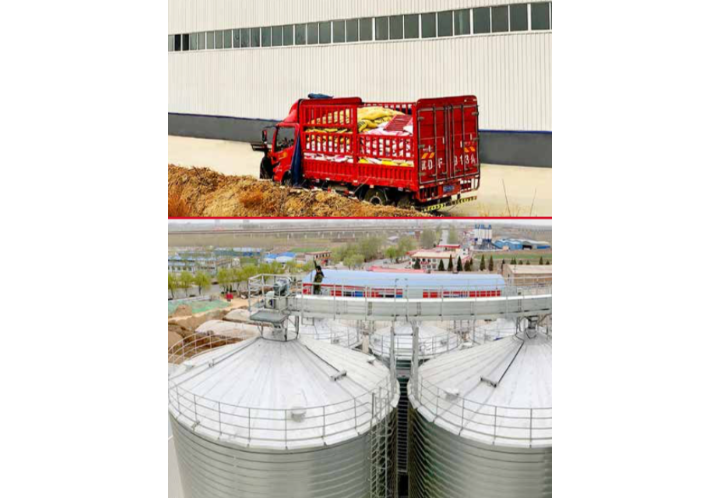Connecting past practices with a futuristic feed focus: China - A challenging environment for feed producers