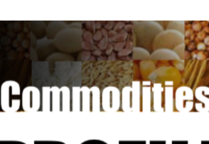 World grain and feed market review