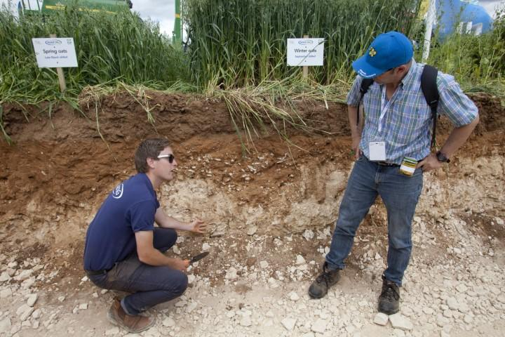 Soil health: How farmers can maximise its potential with Cereals