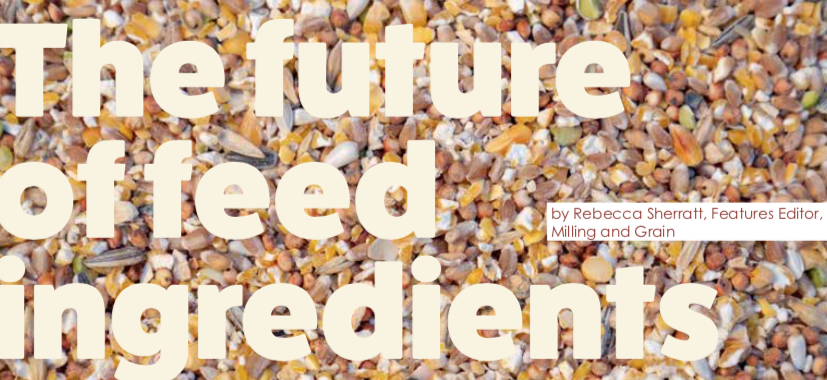 The future of feed ingredients